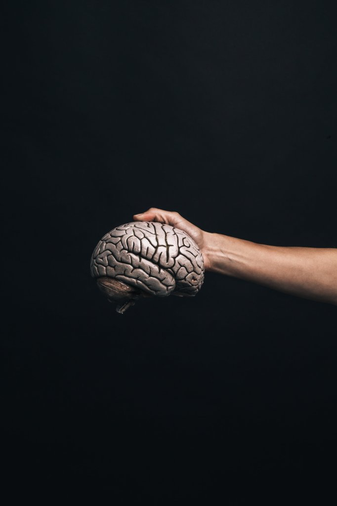 the brain and the effect of impulses
